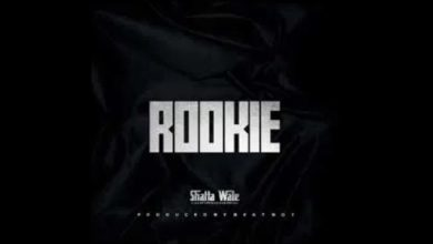 Dowmload: Shatta wale - Rookie
